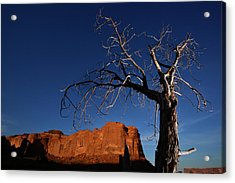 A Mesquite Trees And Buttes Acrylic Print