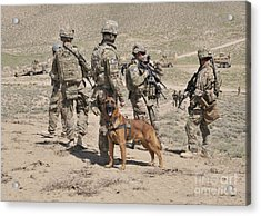 A Military Working Dog Accompanies U.s Acrylic Print by Stocktrek Images