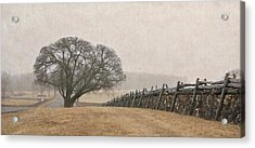 A Misty Morning In Horse Country Acrylic Print