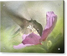 A Moment In The Flower Acrylic Print