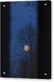 A Moon In A Blue Morning Acrylic Print