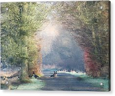 A Morning In Eden Acrylic Print