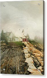 A Morning In Maine Acrylic Print by Darren Fisher