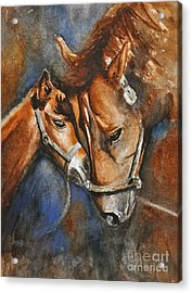A Mother's Love Acrylic Print by Andrea Timm