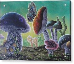 A Mushroom Kingdom Acrylic Print