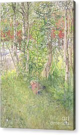 A Nap Outdoors Acrylic Print by Carl Larsson