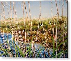 A Natural Aviary Acrylic Print