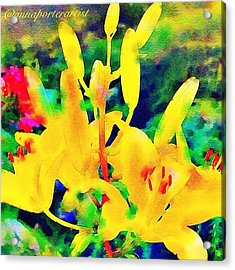 A Glorious New Day Acrylic Print