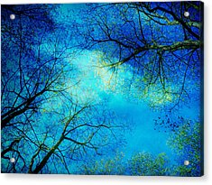 A New Day Acrylic Print by Angela Bruno