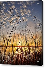 A New Day Begins ... Acrylic Print by Juergen Weiss