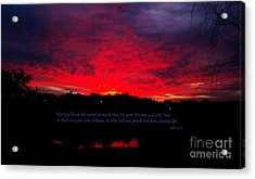 A New Day Acrylic Print by Robert ONeil