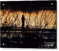 Acrylic Print featuring the photograph A New Day by Robyn King