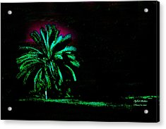 A Night Personality Acrylic Print by Itzhak Richter