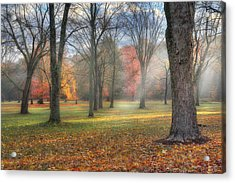 A November Morning Acrylic Print by Bill Wakeley