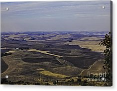 A Palouse State Of Mind Acrylic Print