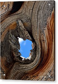 A Patch Of Blue Acrylic Print by Jim Garrison