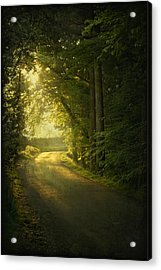 A Path To The Light Acrylic Print