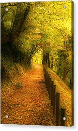 A Path Well Chosen Acrylic Print