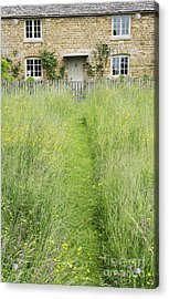 A Pathway Home Acrylic Print by Tim Gainey