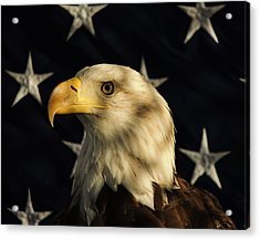 Acrylic Print featuring the photograph A Patriot by Raymond Salani III