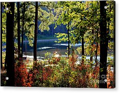 A Peek At Lake O The Pines Acrylic Print by Kathy  White