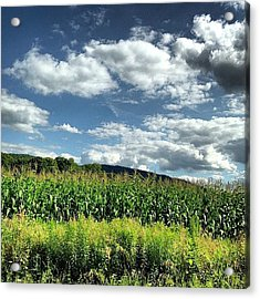 A Perfect Day In Vermont Acrylic Print