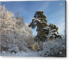 A Perfect Winterday Acrylic Print