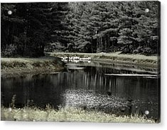 A Pond Acrylic Print