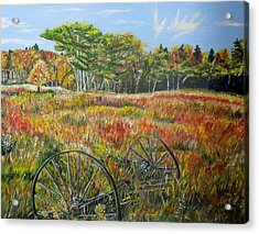 Acrylic Print featuring the painting A Prairie Treasure by Marilyn  McNish