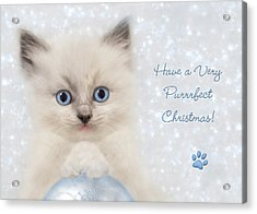 A Purrrfect Christmas Acrylic Print by Lori Deiter