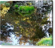 A Quiet Little Pond Acrylic Print by Ira Shander