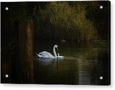 A Quiet Spot Acrylic Print by Peter Scott
