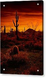 A Red Desert  Acrylic Print