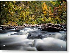 A River Is Furious And Smooth Acrylic Print by Andres Leon
