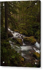 A River Passes Through Acrylic Print by Mike Reid