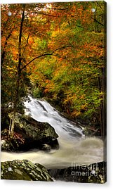 A River Runs Through It Acrylic Print by Michael Eingle