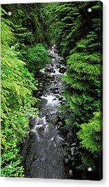 A River Runs Through It Acrylic Print by Russ Bishop