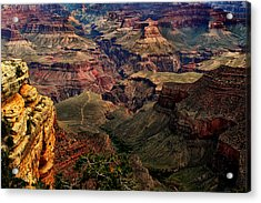 A River Runs Through It-the Grand Canyon Acrylic Print by Tom Prendergast
