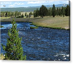 A River Runs Through Yellowstone Acrylic Print by Laurel Powell