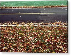 Road In Autumn Acrylic Print