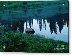 A Rock In The Reflection Acrylic Print by Jeff Swan
