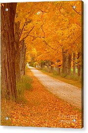 A Romantic Country Walk In The Fall Acrylic Print by Lingfai Leung