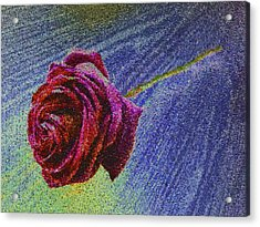 A Rose For You From Kenneth James Acrylic Print