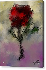 A Rose Is Acrylic Print