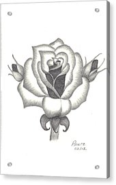 Acrylic Print featuring the drawing A Rose  by Patricia Hiltz