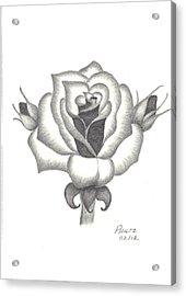 A Rose  Acrylic Print by Patricia Hiltz