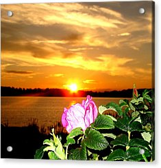 A Rosy Sunset In Maine Acrylic Print