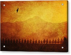 A Row Of Trees And A Raven Silhouetted Acrylic Print by Roberta Murray