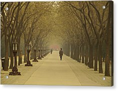 A Royal Stroll Acrylic Print by Aaron Bedell