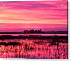 A Saint Helena Island Sunset Acrylic Print by Patricia Greer
